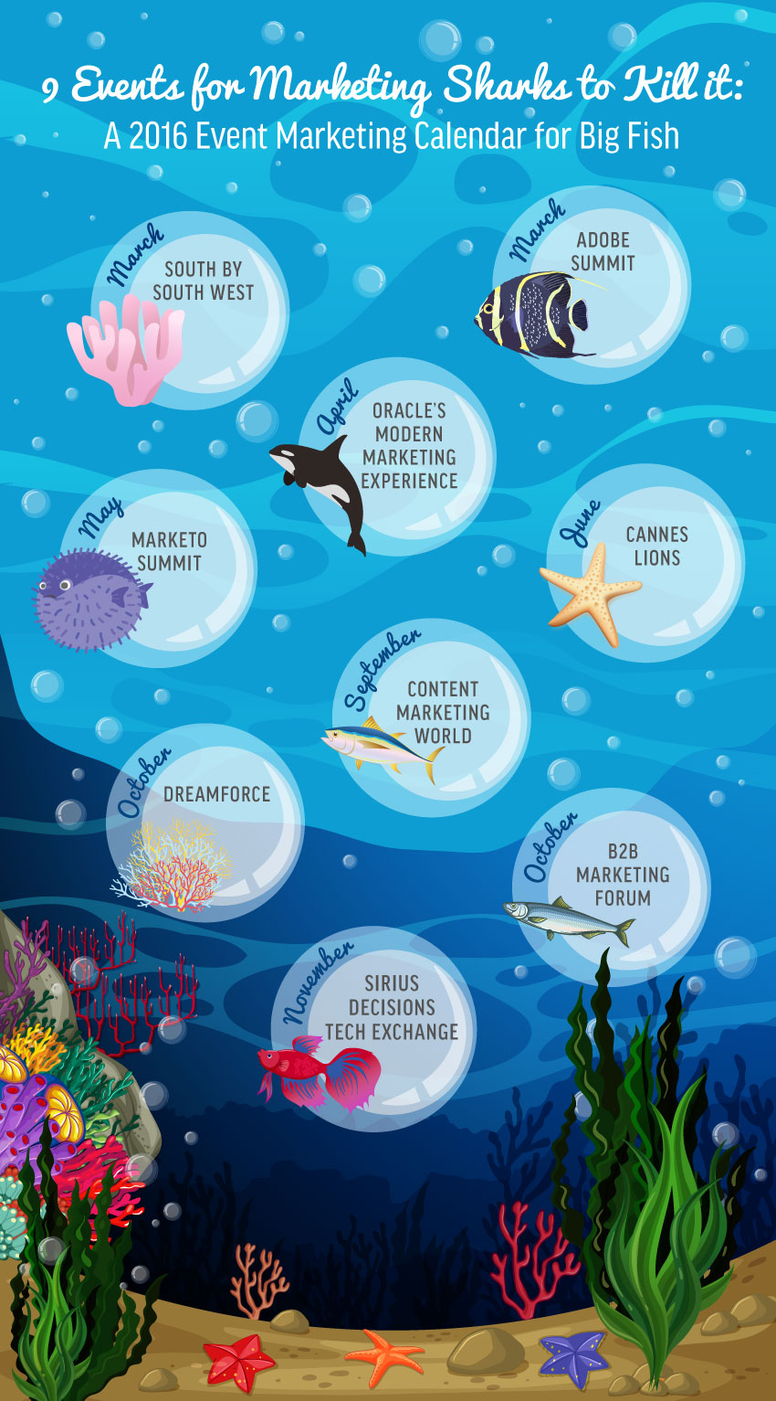 big-fish_calendar_infographic